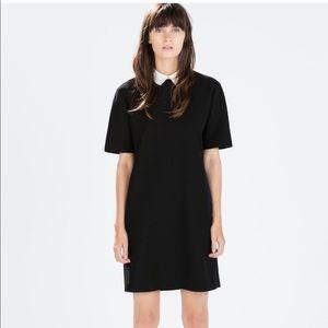 ZARA Shift Dress with Poplin Collar